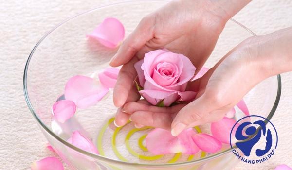 Nước hoa hồng Shiseido có cồn không?