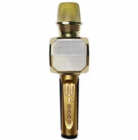 Micro Karaoke Kiêm Loa Bluetooth SD-10