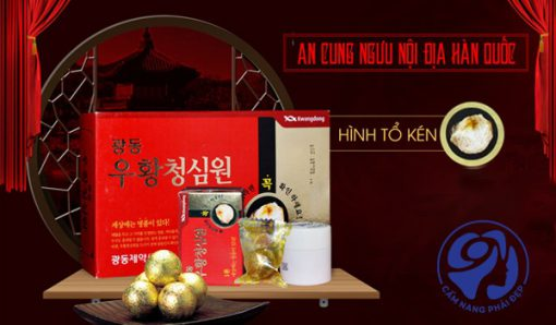 An cung ngưu hoàn tổ kén kwangdong chính hãng8